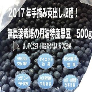 ■新着!2017年手摘み莢出し収穫・無農薬栽培の丹波特産黒豆 500g(野菜)