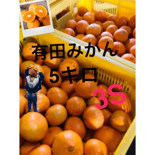 和歌山 有田みかん 早生3S5キロ 完熟!(フルーツ)