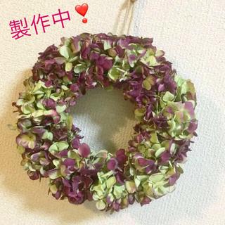 秋色紫陽花のドライリースライム&レッド(ドライフラワー)