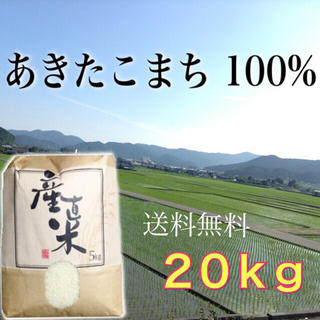 【つばさ様専用】愛媛県産あきたこまち100%   新米20㎏   農家直送(米/穀物)