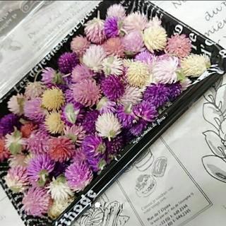 再々販♥️︎ドライフラワー♡千日紅 100個+α 詰め合わせ 花材 ハンドメイド(ドライフラワー)