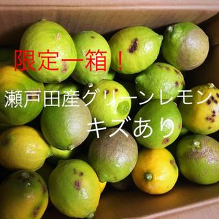 瀬戸田産グリーンレモンキズあり(フルーツ)