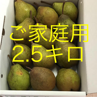 シルバーベル  食べ頃‼️ ご家庭用  2.5キロ(フルーツ)