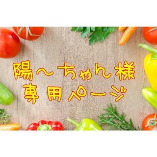 ★陽~ちゃん様専用ページ(野菜)