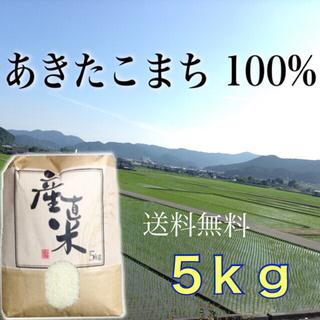 【マニ様専用】愛媛県産あきたこまち100%  新米5㎏   農家直送(米/穀物)