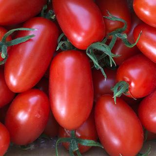 フルーツトマト アイコ(野菜)