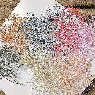 花材 ドライフラワー ミニかすみ草 7色セット(ドライフラワー)