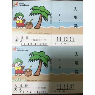 ハワイアンズ 入場券 ペアチケット 2枚(プール)