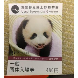 上野動物園一般団体入場券大人1枚(動物園)