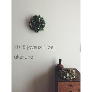 冬の彩り もみの木とベルギーナッツのシンプルなグリーン ドライフラワー リース(ドライフラワー)