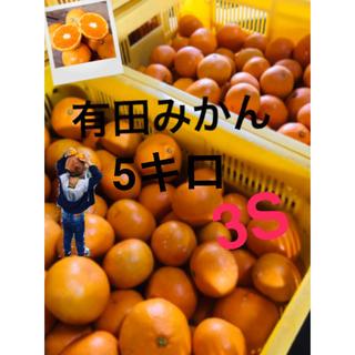 和歌山 有田みかん早生3S5キロ  ただいま完熟!(フルーツ)