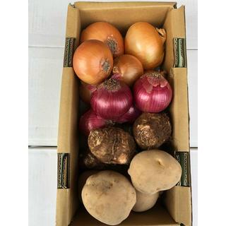 野菜セット-10F(野菜)
