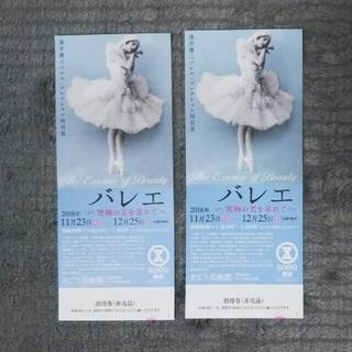 ソゴウ(そごう)のバレエ~究極の美を求めて~ 招待券2枚(美術館/博物館)