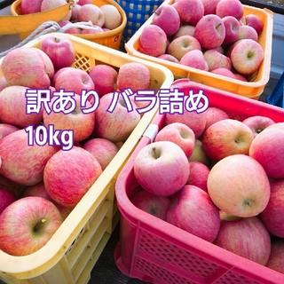 ミィ様★ 10kg 山形県産 ふじ 訳あり バラ詰め(フルーツ)