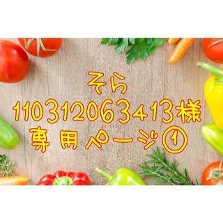 ★そら110312063413様専用ページ①(野菜)