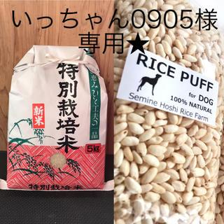 新米 宮城県産 ひとめぼれ 5キロ& ライスパフ for Dog ★3袋入り(米/穀物)