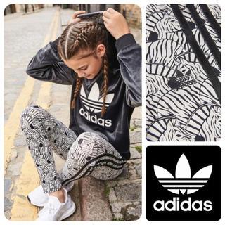 アディダス(adidas)の《新品》adidas  originals  ゼブラ レギンス(レギンス/スパッツ)