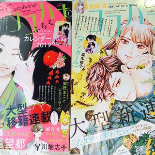 ココハナ1月号『m03mさん専用』(漫画雑誌)
