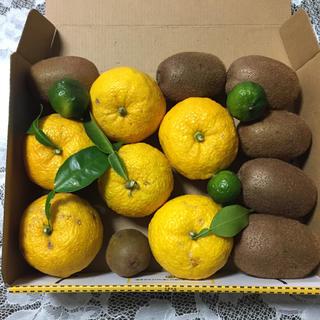 無農薬  柚子、キゥイ–、シークワーサーの詰め合わせ(フルーツ)