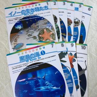 沖縄美ら海水族館 美ら海観察ガイド(地図/旅行ガイド)