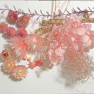 花材 ドライフラワー ハーバリウム WP(ドライフラワー)