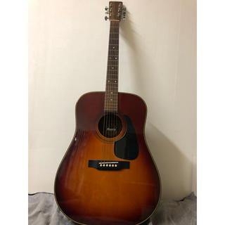 クリッシーモリス(Chrissie Morris)のモーリス MD-502(アコースティックギター)
