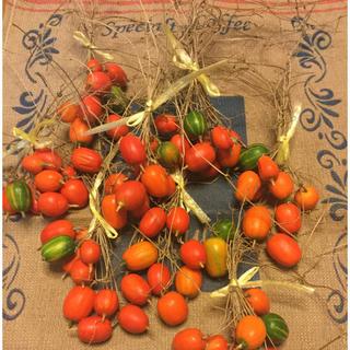 クリスマスに。お正月にも。朱色が可愛いカラスウリの実蔓付き10個(ドライフラワー)