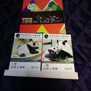 上野動物園入場券 チケット2枚(動物園)