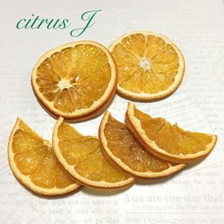 citrus  J ドライフルーツ(ドライフラワー)