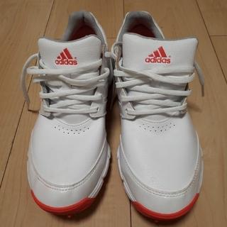 アディダス(adidas)のレディース ゴルフシューズ アディダス(シューズ)