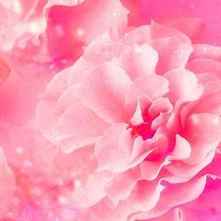 カオウ(花王)のエイトフォー 8×4 ロールオン フレッシュフローラル 45ml 未使用(制汗/デオドラント剤)