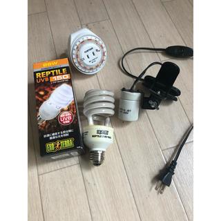 爬虫類 紫外線 ライト ジェックス エキゾテラ レプタイルUVB150 26W(爬虫類/両生類用品)