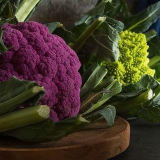 カリフラワー2種 種子(ロマネスコ+パープル)計70粒(野菜)
