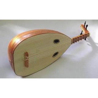 琵琶ウードギター(その他)