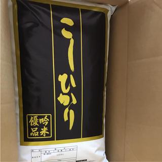 コシヒカリ20キロ(米/穀物)