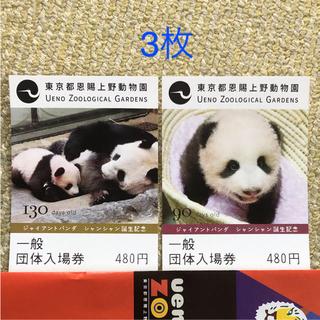上野動物園一般団体入場券大人3枚(動物園)