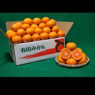 まきまき0210様専用ページ 訳あり‼️有田みかん 10kg 3Sサイズ(フルーツ)