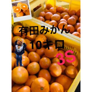 マサ 様専用 和歌山 有田みかん3S10キロ 極小!(フルーツ)