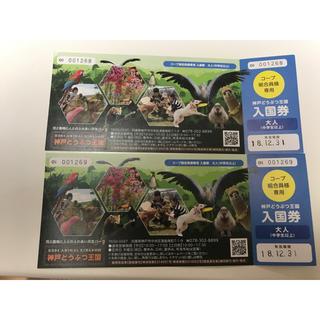 【みーたん様専用】神戸どうぶつ王国 入国券 大人2枚(動物園)