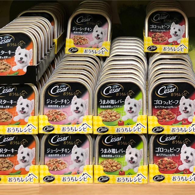 CASAR(シーザー)のシーザーおうちレシピ  162個 その他のペット用品(ペットフード)の商品写真