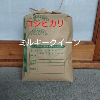 新米です!白米5㎏(米/穀物)