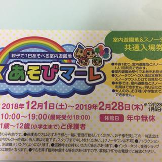東京あそびマーレ 入場券2枚(遊園地/テーマパーク)