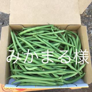 鹿児島産サヤインゲン500g^_^(野菜)