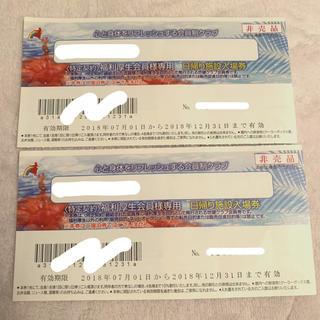 ハワイアンズ 入場チケット(プール)