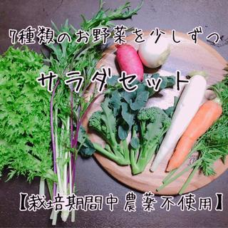 【サラダセット・栽培期間中農薬不使用】渥美半島から直送!旬彩野菜サラダセット(野菜)