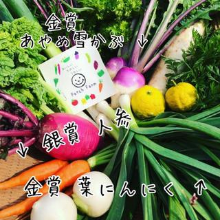 【組み合わせ自由!選べる野菜】渥美半島から直送!旬彩野菜バスケット(野菜)