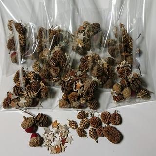 4種類の木の実と白樺のスターチップミニ☆の小分けセット(ドライフラワー)