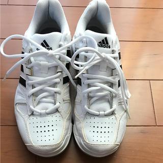 アディダス(adidas)のアディダス カーペットシューズ 25cm(シューズ)