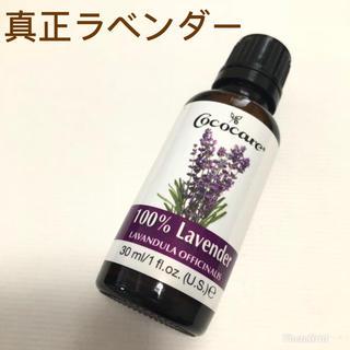 【真正ラベンダー】100%植物性エッセンシャルオイル 30ml(エッセンシャルオイル(精油))