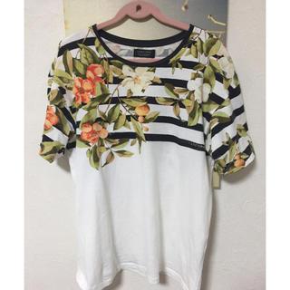 ザラ(ZARA)のZARA  MAN Tシャツ(Tシャツ/カットソー(半袖/袖なし))